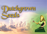 Logo Dutchgrown Seeds