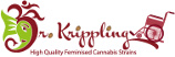 Logo Dr. Krippling Seeds