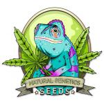 Logo Natural Genetics Seeds