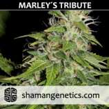 Marley's Tribute