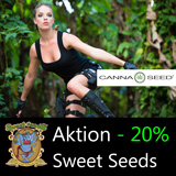 Sweet Seeds in Aktion