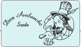 Logo Don Avalanche Seeds