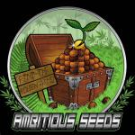 Logo Ambitious Seeds