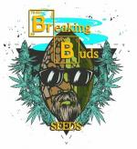 Logo Breaking Buds Seeds