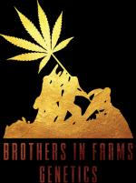 Logo Brothers In Farms