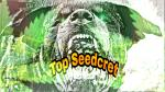 Logo Top Seedcret