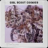 Blim Burn Seeds Girl Scout Cookies