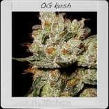 OG\'s Kush