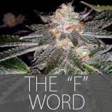 Exclusive Seeds The F Word