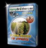 Hempbrothers Diesel Automatic