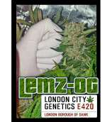 London City Genetics Lemz OG