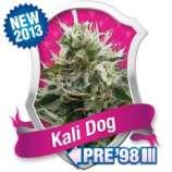 Kali Dog
