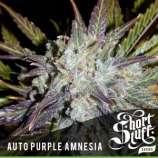 Auto Purple Amnesia