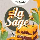 La S.A.G.E. x Birthday Cake x SBC