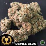 The Devil's Harvest Seed Company Devils Glue