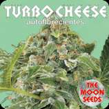 The Moon Seeds Turbo Cheese