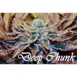 Therapy Seeds Deep Chunk
