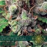 Vision Kush