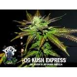OG Kush Express