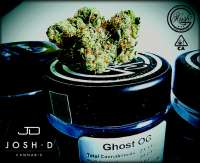 Clone Only Strains Ghost OG - foto de Justin108