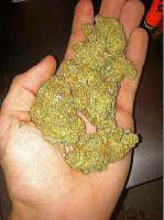 Unknown or Legendary Platinum Bubba - foto de MojoBobo